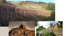 Auvergne haute loire